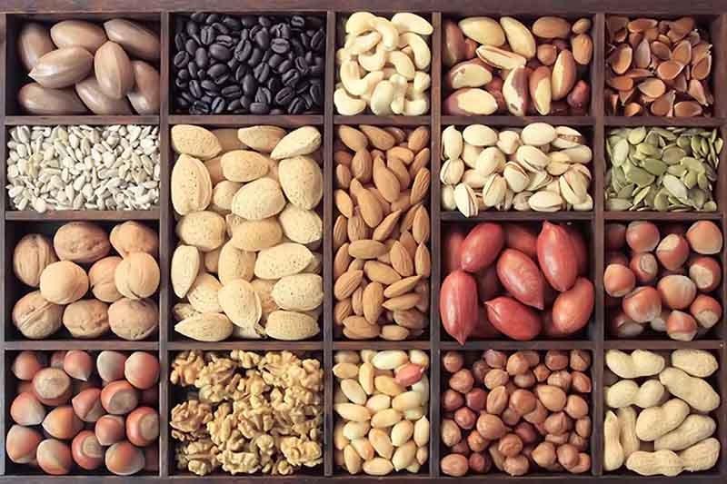 Bạn có thể thoải mái ăn các loại hạt trong ngày Tết