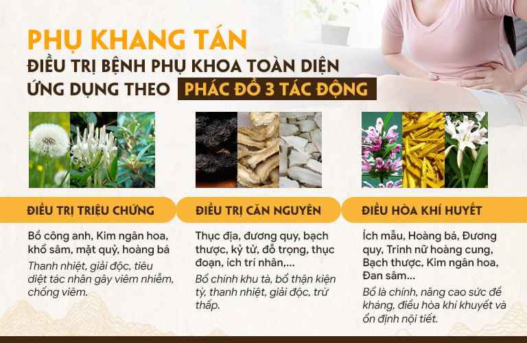 Phác đồ Phụ Khang Tán chữa viêm phụ khoa và khí hư bệnh lý hiệu quả TOÀN DIỆN