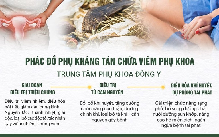 Phác đồ Phụ Khang tán chữa viêm phụ khoa hiệu quả TOÀN DIỆN