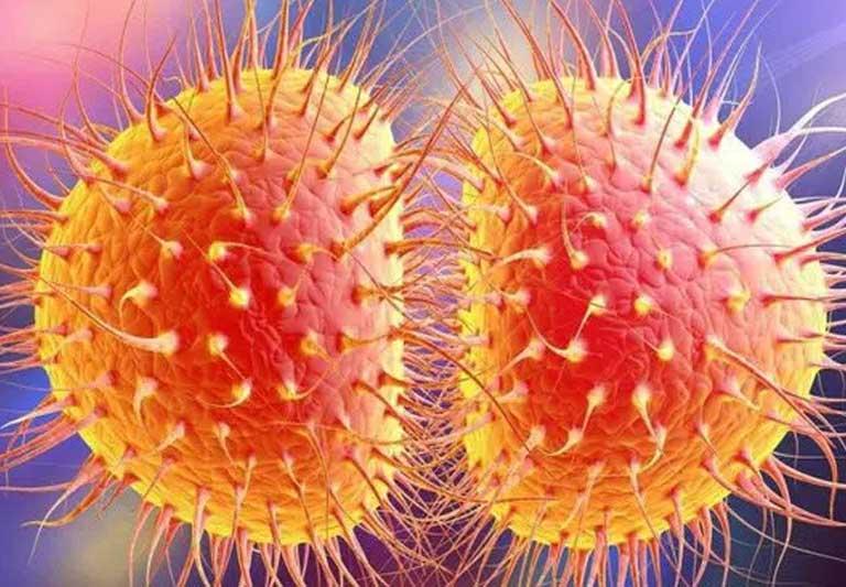 Viêm cổ tử cung do khuẩn lậu có thể lây cho chồng qua đường tình dục.