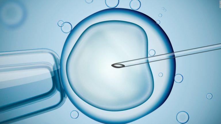 Theo IVF, trứng và tinh trùng chọn lọc được nuôi dưỡng trong môi trường ống nghiệm