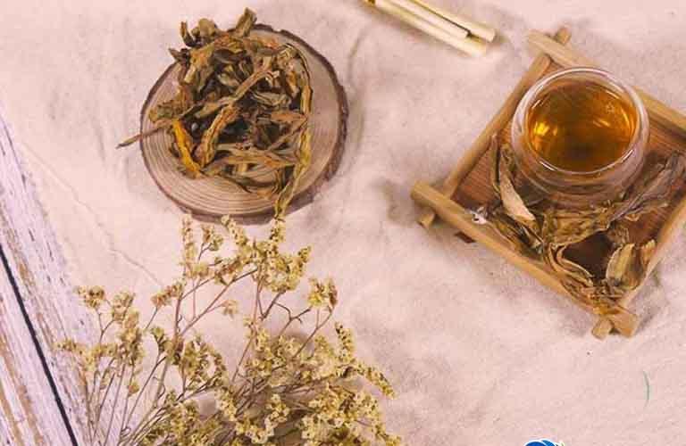 Thảo dược chữa nấm phụ khoa trinh nữ hoàng cung loại sấy khô