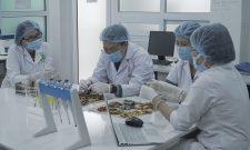 Thẩm định một số bài thuốc cổ truyền phục vụ nghiên cứu chuyên sâu thuốc u xơ tử cung